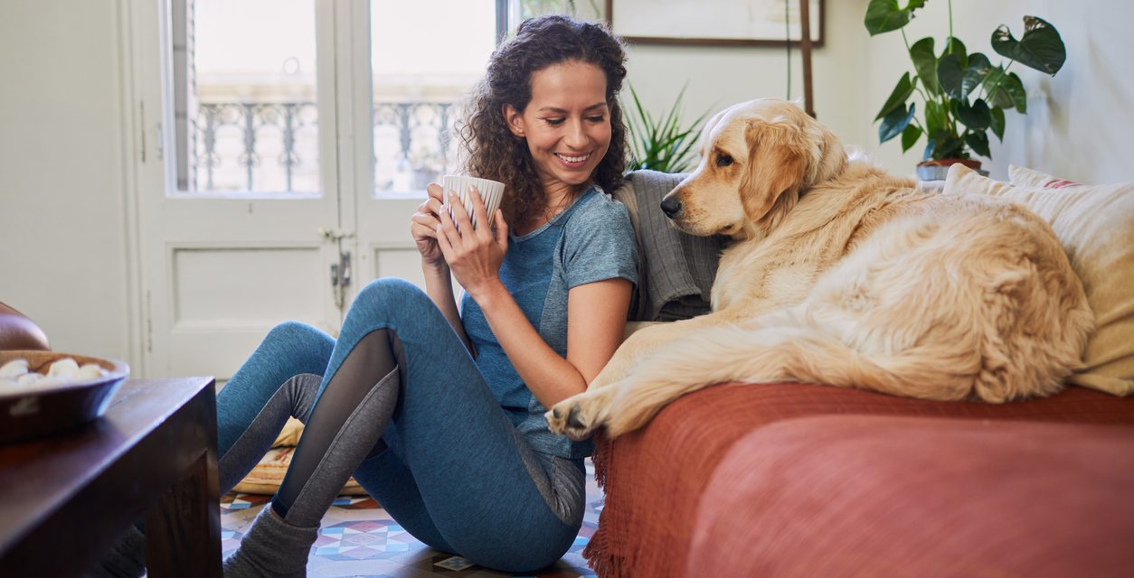 Is Your Pet Risking Your Health?
