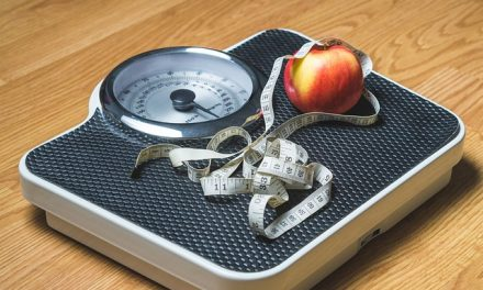 How Does Weight Watchers Work: Everything You Should Know