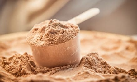 Whey Protein vs Plant Protein: What's the Difference?